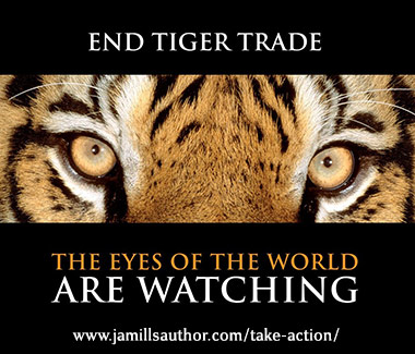 End Tiger Trade: The Eyes of the World are Watching